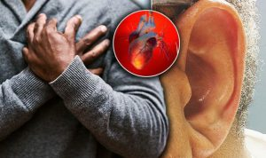 Heart Tonic - Kúpiť - užitočný - účinky