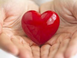 Heart Tonic - Forum - Slovensko - feeedback