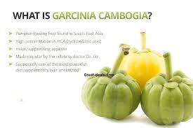 Garcinia Cambogia - lekáreň - ako to funguje  - výsledky