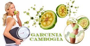 Garcinia cambogia veda - efekt   - Amazon - spätná väzba