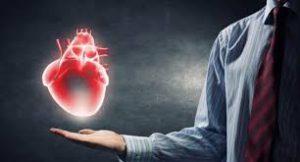 Heart Tonic - Test - cena - v lekárni