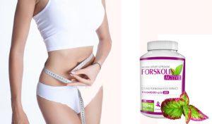 Forskolin Active - v lekárni - forum - užitočný